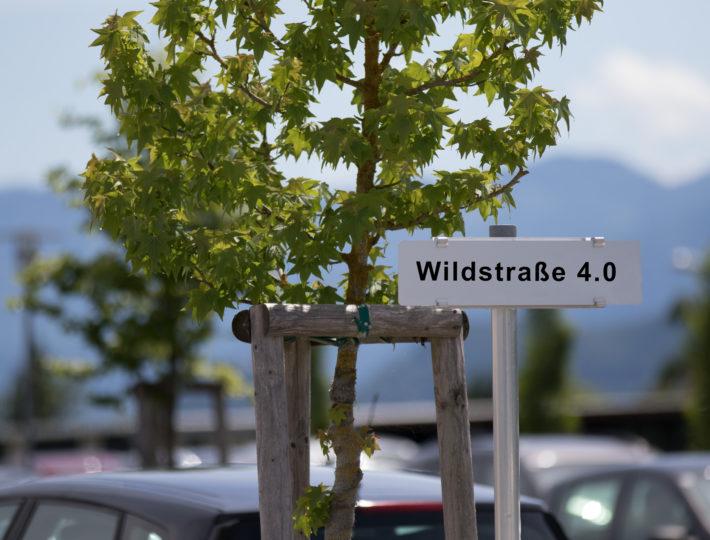 Wildstraße-4.0-710x540.jpg