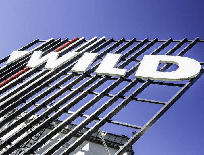 wild-architecture-710x540.jpg